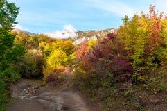 Paisaje colorido hermoso del otoño en montañas con el camino del campo Foto de archivo libre de regalías