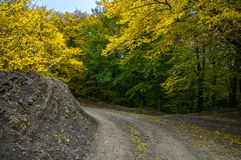 Paisaje colorido hermoso del otoño en montañas con el camino del campo Imagen de archivo