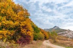 Paisaje colorido hermoso del otoño en montañas con el camino del campo Imágenes de archivo libres de regalías