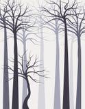 Paisaje con el bosque Fotografía de archivo libre de regalías