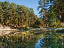 Paisaje con el bosque y el río del pino imagen de archivo libre de regalías