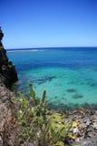 Paisaje con el cactus Cactus delante del océano Imagen de archivo