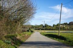 Paisaje con el camino 3 Fotos de archivo