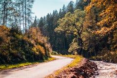 Paisaje con el camino de tierra, la corriente y las colinas del otoño Fotos de archivo libres de regalías