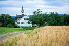 Paisaje con el campo de trigo Fotos de archivo