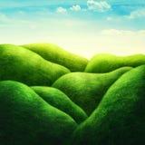 Paisaje con el campo verde fotografía de archivo
