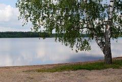 Paisaje con el lago Fotos de archivo