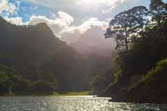 Paisaje con el lago y los árboles en contraluz Viaje del fin de semana del verano al campo del bosque Imágenes de archivo libres de regalías