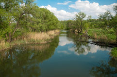 Paisaje con el pequeño río foto de archivo