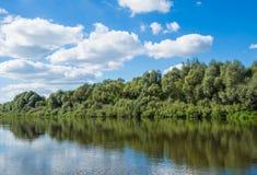 Paisaje con el pequeño río y el bosque joven Imágenes de archivo libres de regalías
