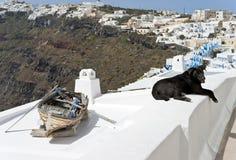 Paisaje con el perro y el barco Fotos de archivo libres de regalías