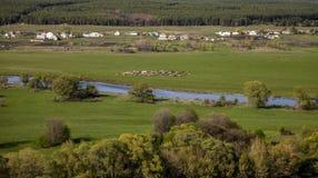 Paisaje con el río Imagen de archivo
