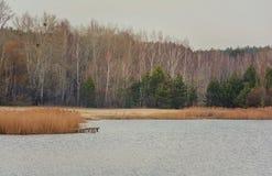 Paisaje con el río en el día del otoño Fotografía de archivo libre de regalías