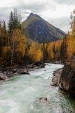 Paisaje con el río rápido Foto de archivo libre de regalías