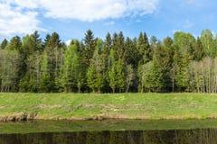 Paisaje con el río y el bosque Imágenes de archivo libres de regalías