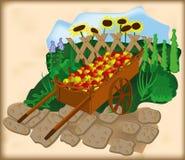Paisaje con la manzana. Un carro de la cosecha. Foto de archivo