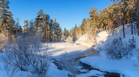 Paisaje con la niebla en el río con el bosque, Rusia, los Urales de la mañana del invierno Fotografía de archivo