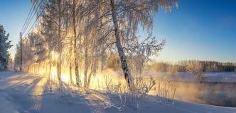 Paisaje con la niebla en el río con el bosque, Rusia, los Urales de la mañana del invierno Fotos de archivo