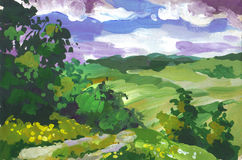 Paisaje del verano con las colinas Imagen de archivo libre de regalías
