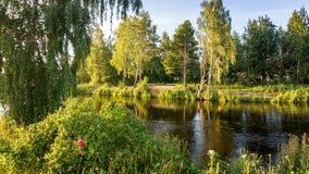 Paisaje con las flores en la orilla del lago, depósito del reftinskoye, Rusia, Ural del verano foto de archivo libre de regalías