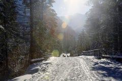 Paisaje con las llamaradas coloridas de la lente en las montañas de Tatra, Polonia del invierno foto de archivo