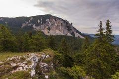 Paisaje con las montañas del bosque debajo de las nubes fotografía de archivo libre de regalías