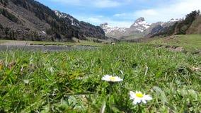 Paisaje con las monta?as y la peque?a corriente del r?o, cielo azul, los Pirineos franceses almacen de metraje de vídeo