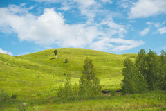 Paisaje con los prados, las colinas y el cielo azul Imagen de archivo