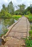 Paisaje con un puente de madera Fotografía de archivo