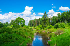 Paisaje con un río Imagenes de archivo