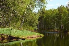 Paisaje con un río cerca de las cabañas Imágenes de archivo libres de regalías