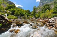 Paisaje con un río de la montaña Imágenes de archivo libres de regalías