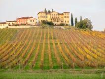 Paisaje Conegliano Italia del color del otoño fotos de archivo libres de regalías