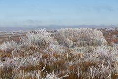 Paisaje congelado Fotografía de archivo libre de regalías