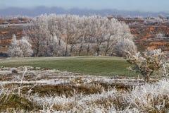 Paisaje congelado Foto de archivo libre de regalías