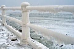 Paisaje congelado de la cerca fotografía de archivo