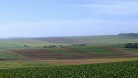 Paisaje cultivado del campo de granja almacen de metraje de vídeo