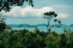 Paisaje de árboles, del mar y de montañas Imagenes de archivo