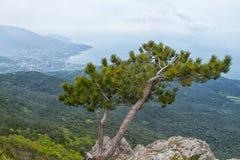 paisaje de Ai-petri Crimea imágenes de archivo libres de regalías
