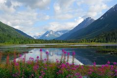 Paisaje de Alaska Fotos de archivo
