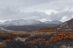 Paisaje de Alaska de la montaña Foto de archivo