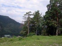 Paisaje de Altai Fotografía de archivo libre de regalías