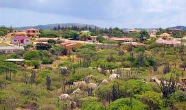 Paisaje de Aruba Imagen de archivo libre de regalías