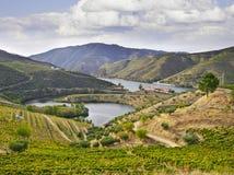 Paisaje de Beautifu en la región del Duero Foto de archivo libre de regalías