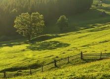Paisaje de Bucovina Imagen de archivo libre de regalías