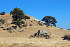 Paisaje de California septentrional Imágenes de archivo libres de regalías