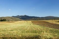 Paisaje de campos cultivados Fotos de archivo
