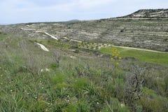 paisaje de Chipre Imagen de archivo libre de regalías
