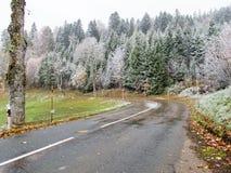 Paisaje de congelación del invierno con los árboles helados Foto de archivo libre de regalías