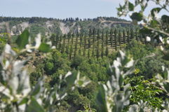 Paisaje de Crete en Toscana Fotografía de archivo